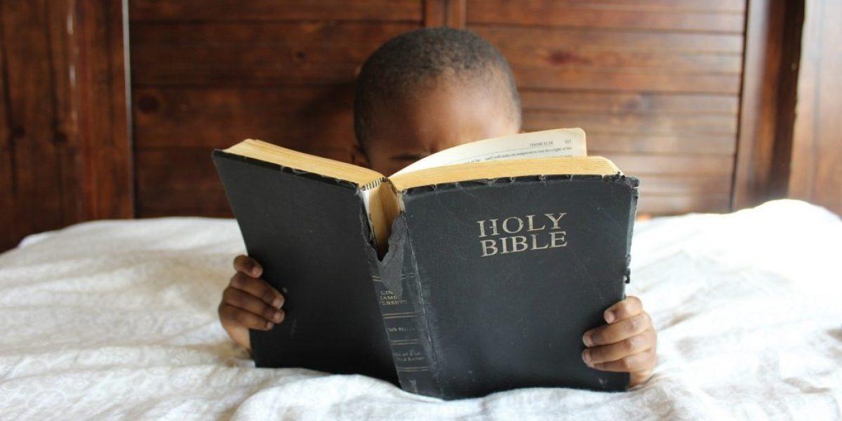 Isaiah Seeking Scripture Deep Diving Bible Study