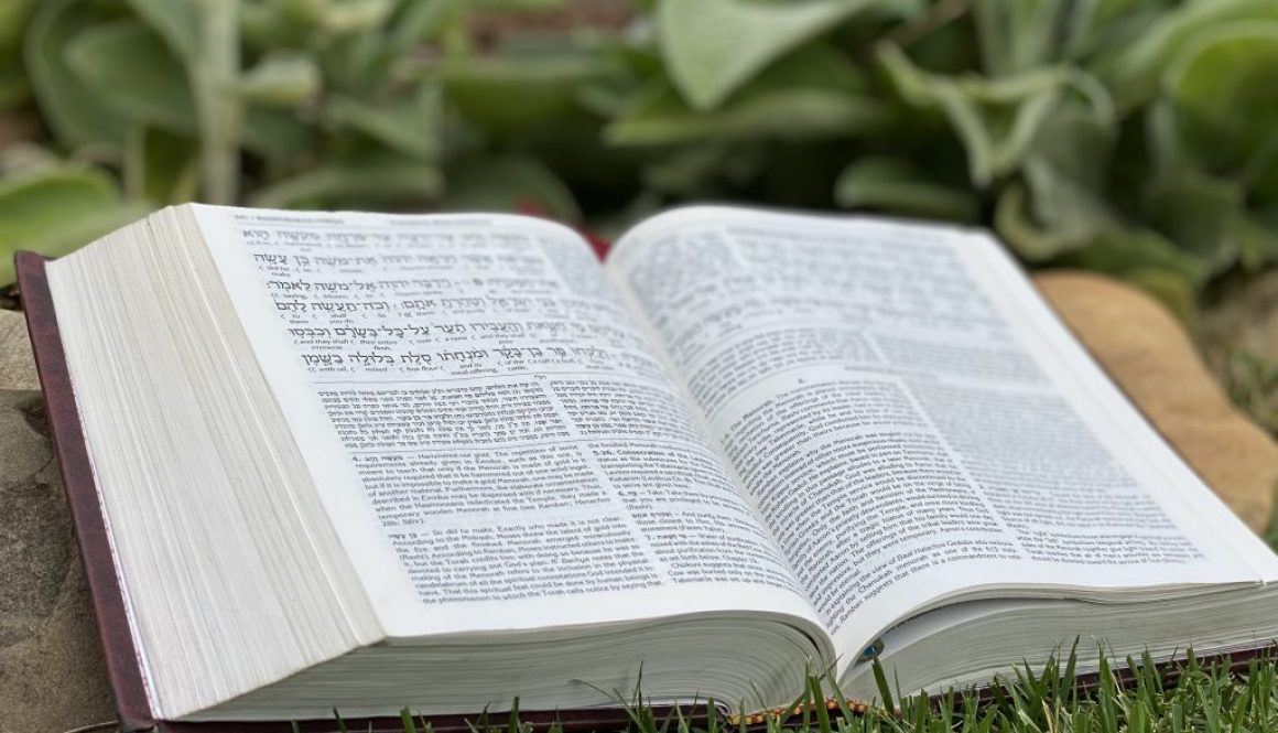 Ezekiel Deep Diving Bible Study