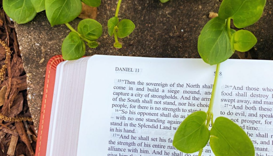 Daniel Deep Diving Bible Study