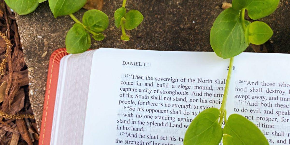 Daniel Deep Diving Bible Study