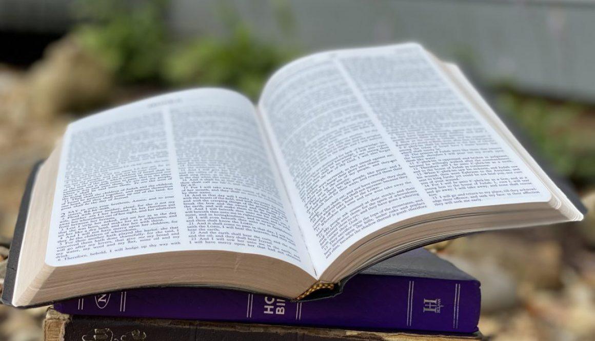 Nahum Deep Diving Bible Study
