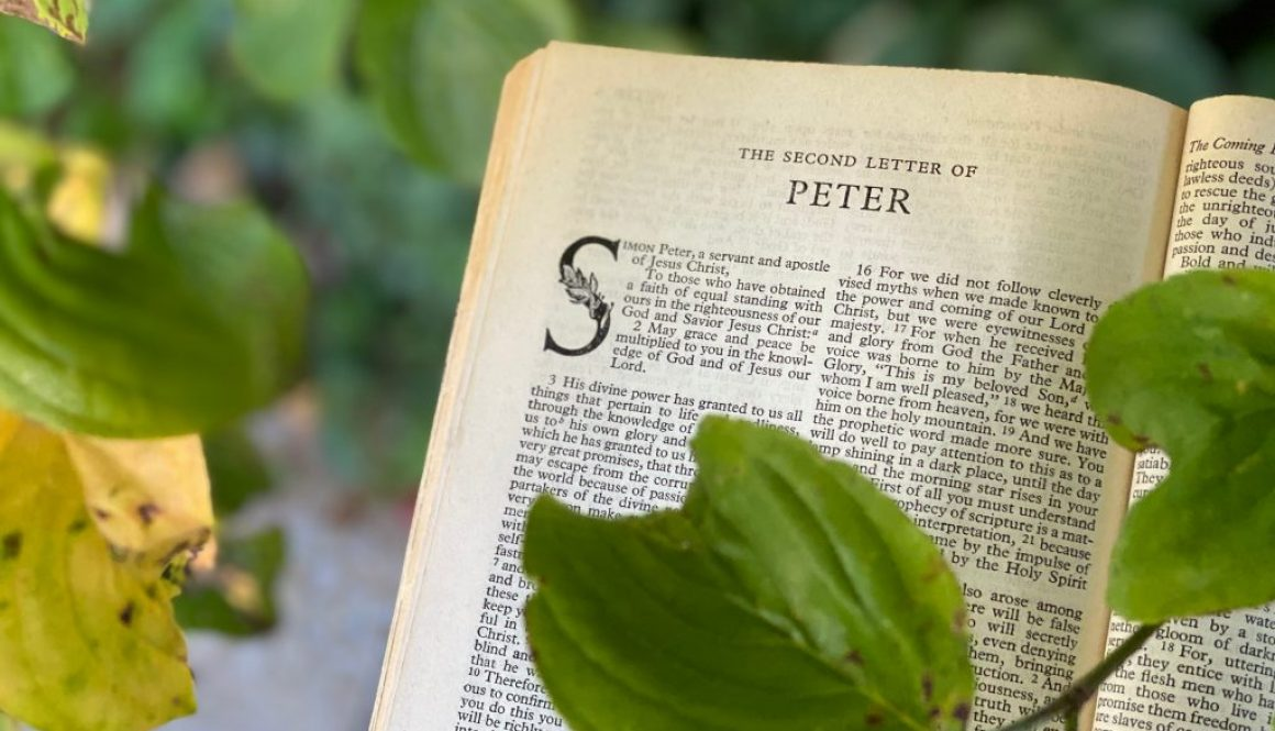1 Peter Deep Diving Bible Study