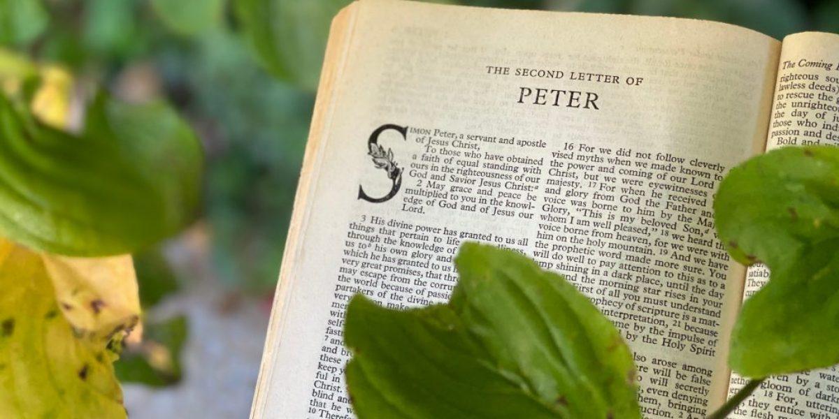 1 Peter Deep Diving Bible Study