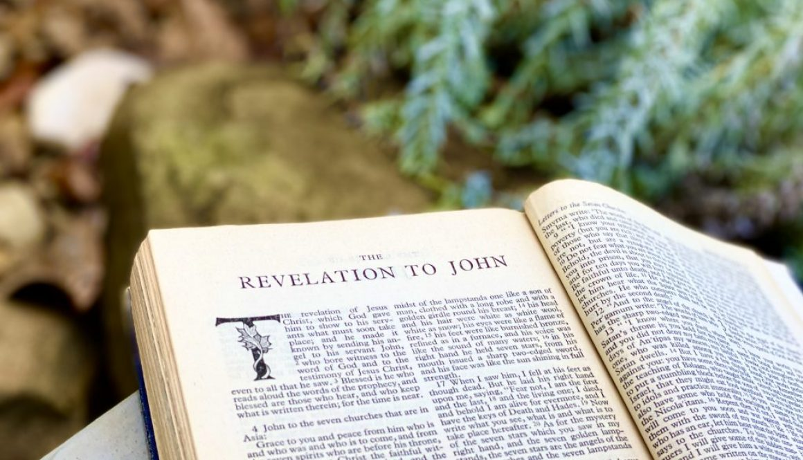 Revelation Deep Diving Bible Study
