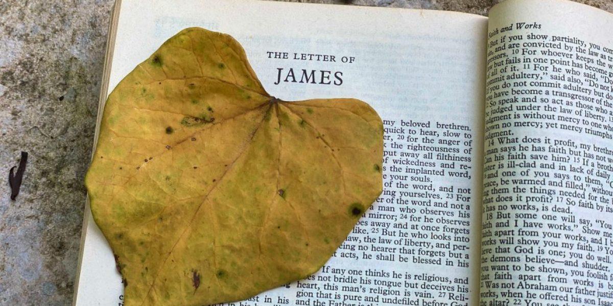 James Deep Diving Bible Study
